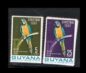 GUYANA 8.1  j..