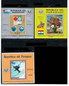 PARAGUAY 48